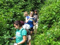 Tufts University Students clearing the overgrown trail at Doleful Pond