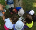 Engaging children in learning: Forest Kindergarten vs Traditional Classroom Teaching