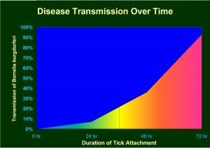 Lyme Disease Graph