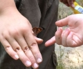 Financial assistance available for Forest Kindergarten