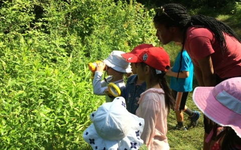 Forest Kindergarten is back- summer 2015!