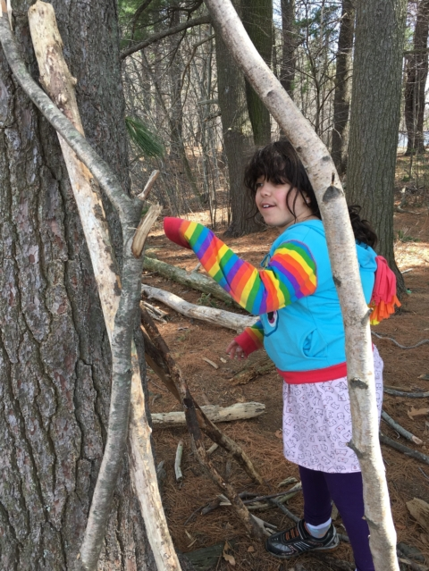 Friends of the Fells Summer Programs in the Woods