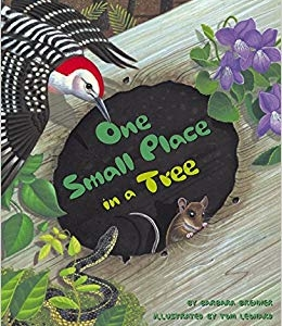 Middlesex Fells StoryWalk®:  One Small Place in a Tree