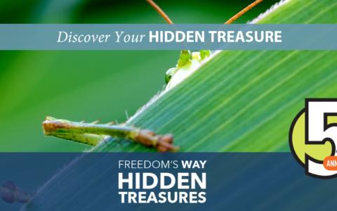 Discover the Fells' Hidden Treasure: the 90mm Meadow!