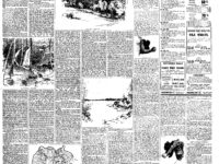 boston_herald_1894-03-04_17-page-0
