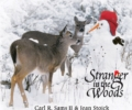 Middlesex Fells Winter StoryWalk®:  Stranger in the Woods