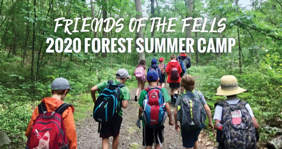 Forest Camp – Information for Parents and Caregivers 2020 ver.
