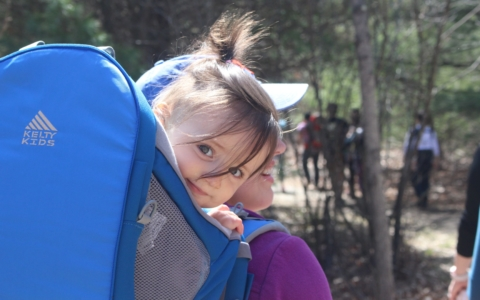 Volunteers Needed– Hike with Babes in the Woods This Spring