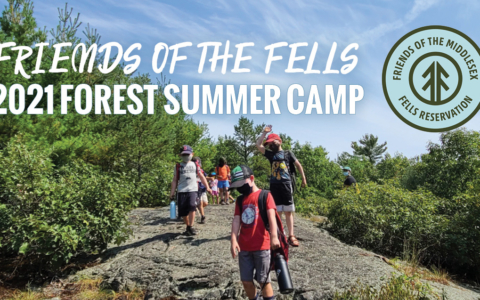 Become a Fells Forest Camp Instructor this summer