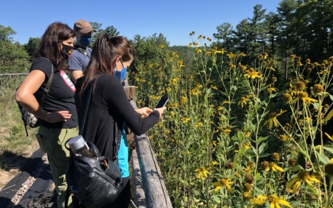 Highlights from EwA's 2020 Conservation Work